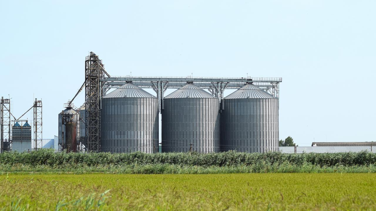 Grain bins in field.